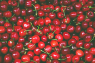 Spring fruits red cherries
