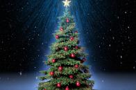 Classic, christmas, tree