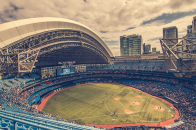 Baseball, stadium