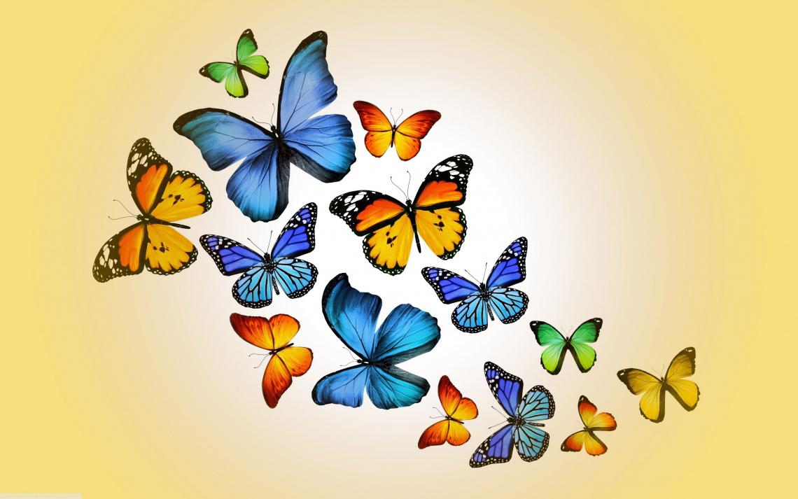 Free Photo Of Butterflies 4k Hd Desktop Wallpaper Me Pixels