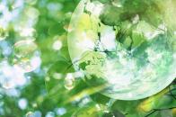 HD Wallpapers Bubble Floating Tree Leafs