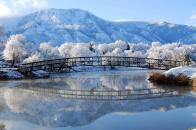 Winter Bridge Landscape