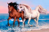 Horses 4K HD Wallpaper Run Sea Ocean Sunset White Brown
