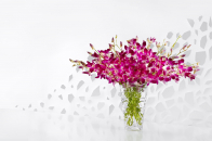 Purple orchids in a glass vase
