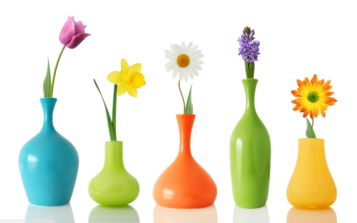 Colorul flower vases