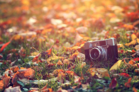 Camera and Grass HD Background
