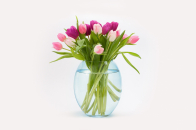 Easter, tulips, flowers, bouquet, in, a, vas