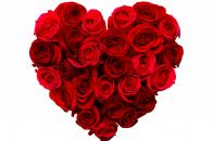 Love Image Heart 5k Rose Flowers