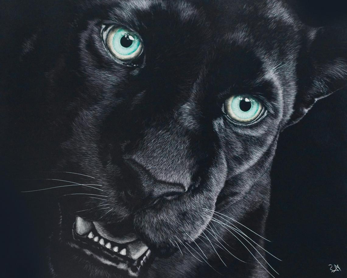 Free Photo Of Black Jaguar Wallpaper Hd Download Me Pixels