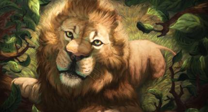 Illustractions lion, muzzle, art, drawing, predator, king of beasts