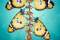 Four Yellow Butterfly image