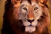 Lion, art, predator, glance, king of beasts