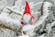 Christmas, gnome