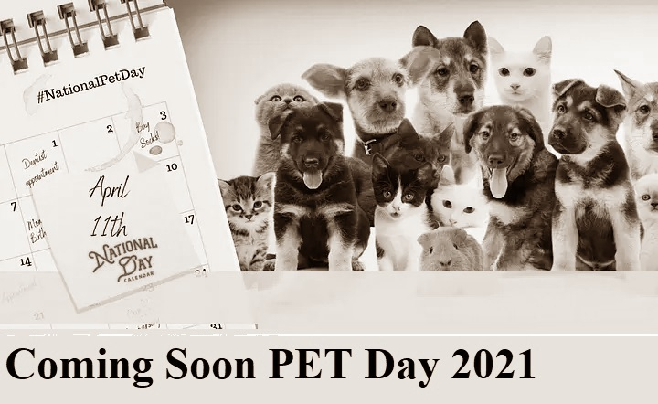 NATIONAL PET DAY April 11 2021