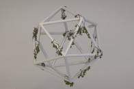 Overgrown polyhedron