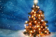 Christmas, tree, 2019