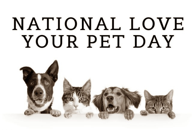 National pet day ecard image
