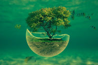 3D abstract 1920×1080 underwater tree widescreen hd abstract desktop wallpaper