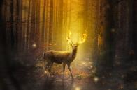 Fire, deer, fantasy, art