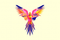 Parrot, vector, drawing, bright, color