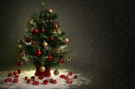 Small, christmas, tree