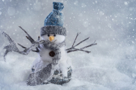 Christmas, snowman, craft