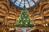 Christmas, tree, in, paris